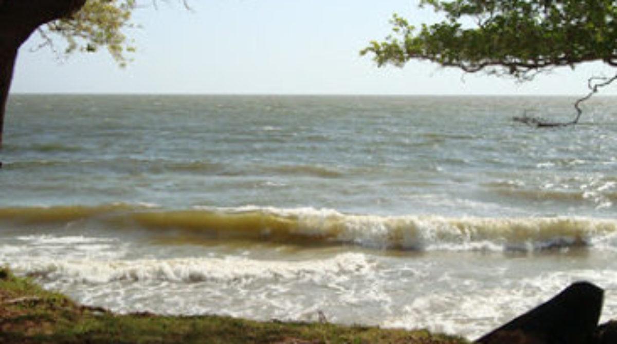 Pará mostra tradição, modernidade e riquezas naturais